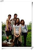 苗栗賞桐花:DSCF6635