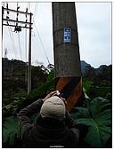 08平溪天燈:DSC00379.jpg