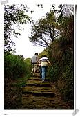陽明山:DSCF6394
