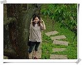 苗栗賞桐花:DSC06905