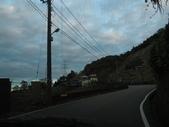二度探索大雪山林道生態:IMG_8889.JPG