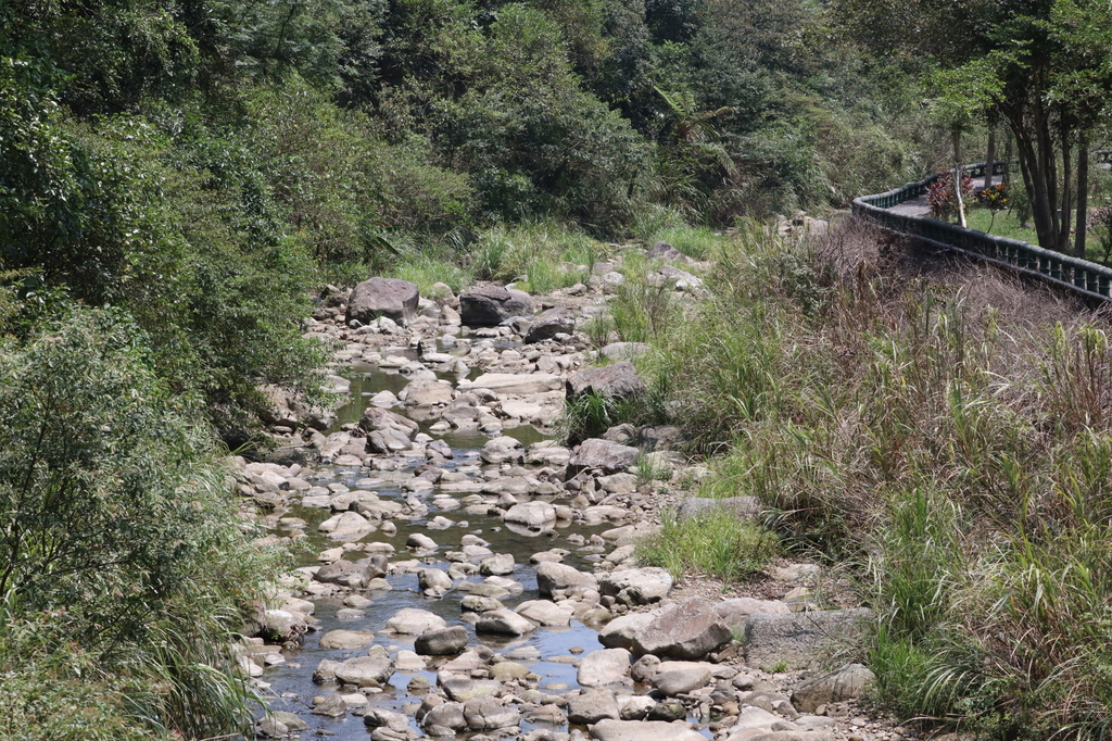 雙溪八景之蘭溪消夏與老農夫生態休閒農莊:074A3932.JPG