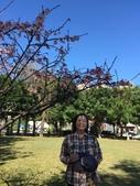文化公園(原復旦公園)賞櫻花與小紅果:S__28041221.jpg