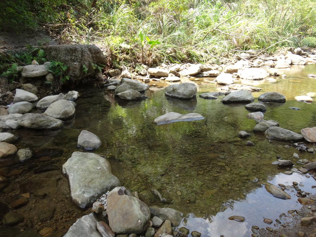 雙溪八景之蘭溪消夏與老農夫生態休閒農莊:DSC03589.JPG