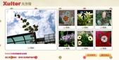Xuite活動-相簿投稿入選作品107年:1070126復旦冬天花草.jpg