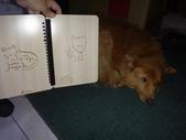 小女兒20歲成人禮物《木雕筆記本--木頭方程式》:DSC00544愛犬Yuni.JPG
