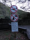 東勢大雪山半日賞鳥:IMG_8651.JPG