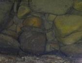 丁子蘭溪與虎豹潭北勢溪水中的魚、蝦、螺和鱉:DSC04341斑帶吻鰕虎.jpg