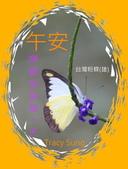 昆蟲問安卡-午安:午安!台灣粉蝶(雄)b.jpg