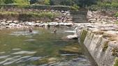 雙溪八景之蘭溪消夏與老農夫生態休閒農莊:25016.jpg