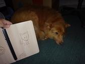小女兒20歲成人禮物《木雕筆記本--木頭方程式》:DSC00543主圖為愛犬造型.JPG
