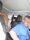 106娘家家族父親節聚餐-石門水庫活魚五吃:DSC01980.JPG