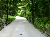 蜜月勝地-馬爾地夫的瑞僖敦渡假村:L1010074E.jpg