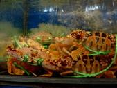 龜吼漁港-珍如意餐廳:DSC08652.JPG