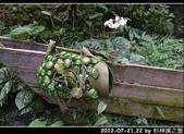 2012-07-21,22 by 杉林溪之旅:20120721-22 杉林溪08.jpg