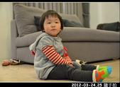 2012-03-24,25 生活隨手拍..:2012-03 生活隨手拍10.jpg