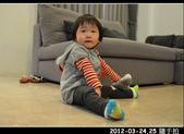2012-03-24,25 生活隨手拍..:2012-03 生活隨手拍11.jpg