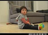 2012-03-24,25 生活隨手拍..:2012-03 生活隨手拍12.jpg
