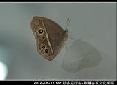 2012-06-17 好客迎好客-銅鑼客家文化園區:2012-06-17 好客迎好客37.jpg