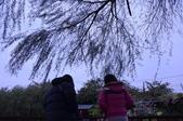 2012-02-19 人間食解:DSC_2144.JPG