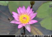 2012-04-22 摸蛤兼洗褲:2012-04-22 同學會04.jpg