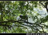 2012-07-21,22 by 杉林溪之旅:20120721-22 杉林溪75.jpg