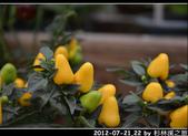 2012-07-21,22 by 杉林溪之旅:20120721-22 杉林溪139.jpg