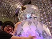 聖誕看燈飾 2007-12-20:蚊