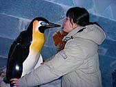 海洋公園 聖誕全城hohoho 2007-12-23:冰雪王國