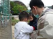 981211桃園羊世界&綠風餐廳:P1130051.JPG