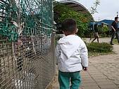 981211桃園羊世界&綠風餐廳:P1130052.JPG