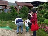 981211桃園羊世界&綠風餐廳:P1130045.JPG