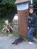 081130花漾秋芒之草嶺古道健行:CIMG0252.JPG