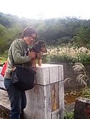 081130花漾秋芒之草嶺古道健行:CIMG0241.JPG