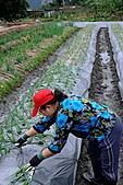 991124-26蘭陽溫泉風情太平山之旅:天山農場7.jpg