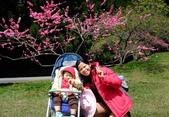 1010325-26春之饗宴-台大農場:1010326-台大林場1.jpg