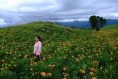 20110907-09金針花(六十石山,赤科山):1010907六石石山8.jpg