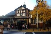 1021210-15 日本東京:明治神宮DSCF3713.jpg
