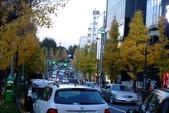 1021210-15 日本東京:明治神宮DSCF3768.jpg