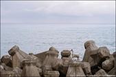 『 太麻里-成功。櫻木平交道x富山護漁區x都歷海灘x比西里岸 』下雨天。台11海線景點拍拍: