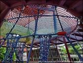 『 樹林。溪北公園x東昇公園x環保公園 』打卡熱點。樹林超好拍的公園景點報報: