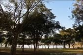 『 池上。大坡池 』日出印象。台東十景之一的夢幻湖泊: