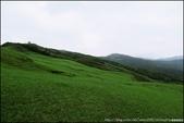 『 貢寮。桃源谷 』來體驗站在高崗上的感受吧:IMG_7455.JPG