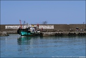 『 頭城。大溪漁港 』現撈仔尚青。午後開始熱鬧的漁市場: