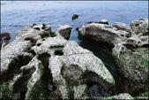 『 石門。老梅石槽 』攝影家必來取景的風景區PART II:IMG_6959.JPG