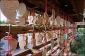 『 埔里。鳥居Torii 喫茶食堂 』拍照打卡。埔里一處很有幸福氛圍的日式景點: