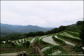 『 貢寮。桃源谷 』來體驗站在高崗上的感受吧:IMG_7397.JPG