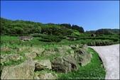 『 三峽。熊空茶園 』一座茶園想表達陽光、尋茶、森呼吸的概念:IMG_6317.JPG