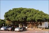 『 安平。台鹽日式宿舍 』靜苑。小而美的日式木造建築: