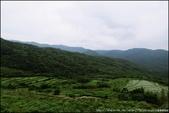 『 貢寮。桃源谷 』來體驗站在高崗上的感受吧:IMG_7414.JPG